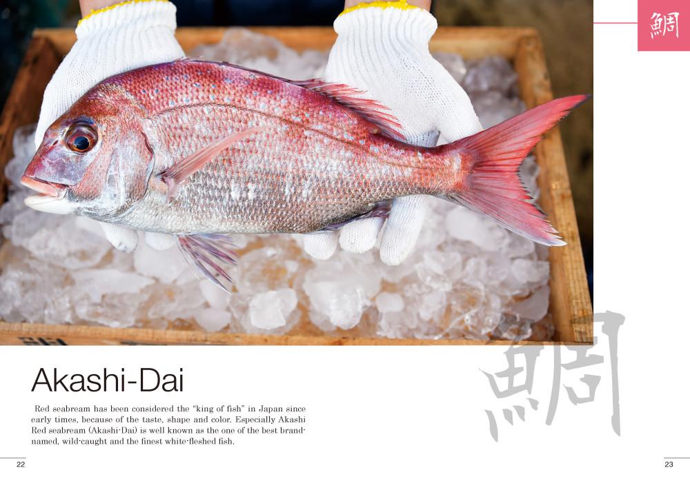 Akashi-Dai明石鯛