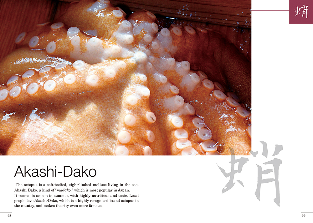 Akashi-Dako明石蛸